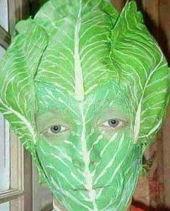 lettuceImage1